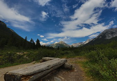 The best is yet to come (Golden Ginkgo) Tags: mountains clouds banffnationalpark hikingtrails nature outdoors landscapes canadianrockies wideanglelens hdr