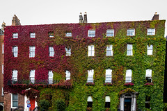 Ireland - Dublin - St Stephen's Green (Marcial Bernabeu) Tags: marcial bernabeu bernabéu irlanda ireland dublin dublín park building edificio parque fachada facade vegetal green verde red rojo roja st stephen