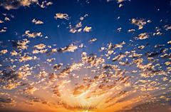 Atardeceres - Islantilla (Stauromel) Tags: islantilla huelva españa andalucia atardecer nubes clouds gloria azul amarillo anaranjado stauromel skyline alquimiadigital fuji fujixt2