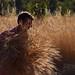 Che ne sai tu di un campo di grano n.3