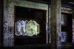 Ouch (Laura Simonsen Braun) Tags: urban grit detroit packard blight ruins graffiti