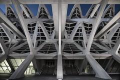 Portale Avanguardia (Roberto -) Tags: valencia città arte scienza ciutat arts ciències calatrava architecture architettura nikon d3200 tokina 1120 night museo principe felipe