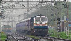 ET WDP-4D (Abhishek Jog) Tags: the second mahamana express of ir 22163 bplkurj sf cruising lush greenery good speed et itarsi wdp4d 40244 suw sukhisewaniyan from nsz nishatpura bpl jn junction bhopal bhopaljn towards bvb bhs vidisha kurj khajuraho bhopalkhajuraho model rake crwsnishatpura