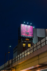 14℃ (bady_qb) Tags: japan osaka trip explore street night a7ii 50mm sony sonyalpha sonya7ii 500px iphone advertising
