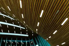 Station (Maerten Prins) Tags: nederland netherlands arnhem station trainstation new hall window windows curve curves light lights lamp lamps ceiling wood reflection vanberkel unstudio