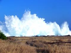 Houle d'hiver (MrBins) Tags: wave houle vague