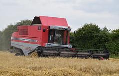 Massey Ferguson 7282 (KS Transport Photography.) Tags: masseyferguson7282 masseyferguson swine eastriding harvest2017