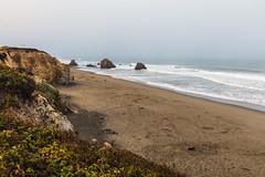 Beach (Estoy Viajando) Tags: california usa beach ocean fortbragg mist fog pacific waves