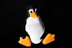 Tux (BarbaraBonanno BNNRRB) Tags: tux mascotoflinux mascot linux