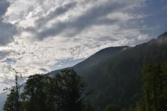 sDSC_3388 (L.Karnas) Tags: slowenien slovenia slovenija sommer summer juli july 2017 gozd martuljek kranjska gora