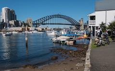 170723_City_Milsons_Point_0002.jpg (FranzVenhaus) Tags: skyline city sydneyharbour sydney nsw australia aus