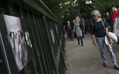 Zaterdag in de Prinsentuin: Expositie Jan Glas