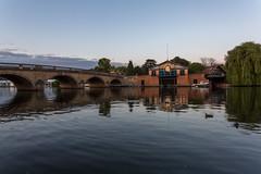 Henley-July-24-17-6717 (Mel Sebastian) Tags: henley thames river henleyonthames