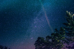 Night Stars (nlopez42) Tags: night stars raw canon light lightroom figeac tree beautiful colorful star sky space nature longexposure astrophotography