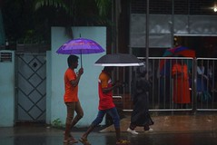 It's raining (Ferdousi.) Tags: bangladesh chittagong daylight raining rainyday monsoon trio umbrella lifestyle life