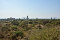 (mdiec) Tags: bagan ancient temples myanmar burma hot air pagodas buddhism mandalay sky plains architecture