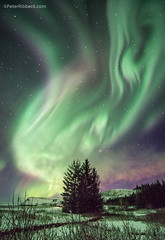icelandic Aurora (Peter Ribbeck) Tags: peterribbeckcomiceland aurora northernlights peterribbeck iceland