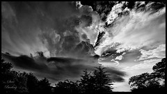 Small Intense Thunderstorm Passes Just to North over Great Marsh Wetlands (stevebfotos) Tags: canarycreek lewes thunderstorm weather storm greatmarsh clouds delaware black white bw wide angle sky topaz