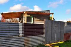fancy fence, HFF! (holly hop) Tags: places bealiba brick farmhouse house mainstreet rural ruraldecay stonewall wall windows corrugated corrugatediron fence fencefriday tin