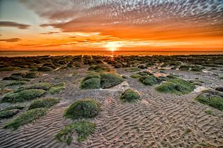 Hunstanton sunset with seaweed rocks in foreground, Norfolk, UK (4)