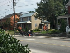Riding through town (afagen) Tags: pennsylvania lancastercounty amishcountry horseandbuggy buggy amish intercourse