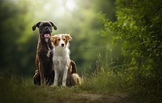 Tini and Sunny