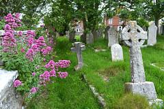 Swanage, England - Melancholy Beauty (BudCat14/Ross) Tags: swanage england graves graveyards dorset