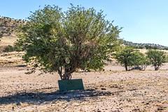 Himba School (gecko47) Tags: namibia kaokoland kunene village himbavillage himbapeople school outdoor shade blackboard stonecircle students education basic arid harsh