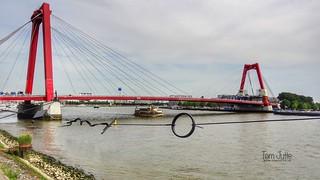 Willemsbrug, Nieuwe Maas, Rotterdam, Netherlands - 5191