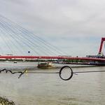 Willemsbrug, Nieuwe Maas, Rotterdam, Netherlands - 5191 thumbnail