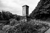 Pleasley Vale Cenotaph 2 (andrewallsop) Tags: architecture bw death flora memorial pleasleyvale sacredspace truegrain year2015