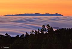 Silky Smooth Fog swells (Omnitrigger) Tags: fog silkyfog bayarea sanfrancisco mttamalpias sunset afterglow omnitrigger nature lightshow longexpo landscape
