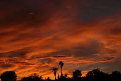 Sunset July 26 2017 #30 (Az Skies Photography) Tags: sun set sunset dusk twilight nightfall cloud clouds sky skyline skyscape skycandy skyfire red orange yellow gold golden salmon black canon eos 80d canoneos80d eos80d rio rico arizona az riorico rioricoaz arizonasky arizonaskyline arizonaskyscape arizonaskycandy arizonaskyfire july 26 2017 july262017 72617 7262017