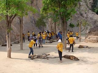 kanchanaburi - thailande 49