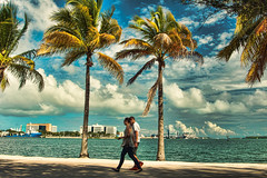 Afternoon walking the shore of the bay (Aglez the city guy ☺) Tags: biscaynebay walking walkingaround waterways afternoon colors downtownmiami miamifl bay bayfront palms people park outdoors