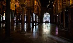 Columns of the Mosque–Cathedral of Córdoba (Tiigra) Tags: córdoba andalucía spain es 2015 architecture church column cordoba interior lantern lattice light moorish repetition rhythm window arch