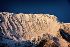 sunrise on larkya himal (beudii) Tags: larkya himal himalaya nepal manaslu circuit trekking berge gletscher glacier mountains peak summit outdoor schnee eis ice snow
