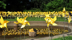 pinwheels (greenelent) Tags: pinwheels prospectpark brooklyn nyc yellow art publicart 365 photoaday