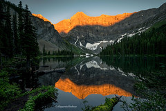 Golden Peaks (Margarita Genkova) Tags: reflections nature landscape rawsonlake canada sunrise rocky mountains glacier scenery water