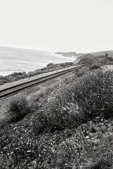 It's a 1907 Brownie and I'll admit there have been some UI improvements over the last 110 years (bunæn) Tags: roll343 kodakno2browniemodelc agfapan25 bw 120 highway1 highway101 california mediumformat kodakbrownie 120film