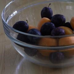 Colours of summer II (tillwe) Tags: tillwe 201707 pflaumen aprikosen apricot plum