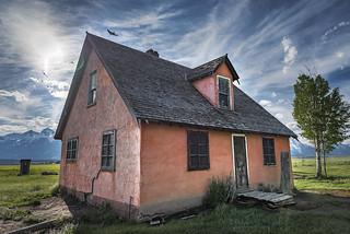 The outhouse, the birds, the tree & the Peach House (Mormon Row)