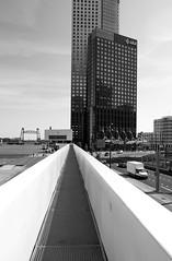 Rotterdam 22-07-2017-3 (Pure Natural Ingredients) Tags: rotterdam rotjeknor 010 architecture architectuur buildings gebouwen black white zwart wit kpn maastoren deloitte