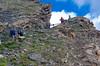 _D7K9462 (lions_italy) Tags: emilius escursioni gsv pila