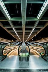 Liege Guillemins At Night IV (Alec Lux) Tags: architecture architecturephotography belgium calatrava design elevator guillemins liège luik minimal minimalism santiago santiagocalatrava stairs station train trainstation urban liege be