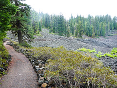 High Lakes Trail between Lake of the Woods and Fish Lake, Klamath County Oregon (ex_magician) Tags: highlakestrail klamathfalls oregon moik photo photos picture pictures image lightroom adobe adobelightroom lakeofthewoods fishlake interesting hiking running trailrunning lava