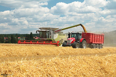 Today's Winter Barley Harvest in Highlands Region (martin_king.photo) Tags: today winterbarleyharvest 2017harvestseason 2017 highlandsregion todays winter barley harvest highlands region clouds cloudyday harvesttime harvest2017 claaslexion760apshybrid claasvario900header masseyferguson8660dynavt annaburgerhts3379 annaburger claas claaslexion combineharvester summerwork tschechischerepublik powerfull martin king photo machines strong agricultural greatday great czechrepublic welovefarming agriculturalmachinery farm workday working modernagriculture landwirtschaft martinkingphoto moisson