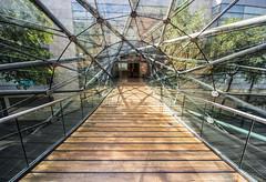 Arndale Centre Walkway, Manchester (northcountrygirl) Tags: manchester walkway bridge sigma1020 shoppingcentre arndalecentre glass