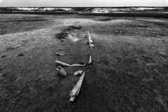 No man's land of INDIA | Dhanuskodi (ayashok photography) Tags: ayp1591 cwc chennaiweekendclickers dhanuskodi pamban island rameshwaram palkstrait ghosttown india desh tamilnadu h2o | தண்ணீர் h2o|தண்ணீர்தண்ணீர்