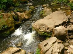 Irreler Wasserfälle (Jörg Paul Kaspari) Tags: irrel irrelerwasserfälle sommer summer eifel südeifel fels felsen sandstein prüm fluss river natur nature wasserfall waterfall wildeeifel